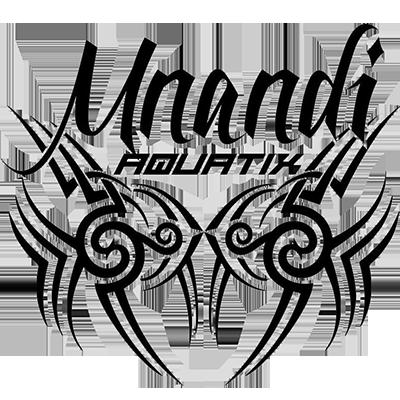 Mnandi Aquatix